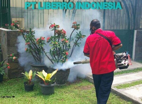 Pest-Control-6